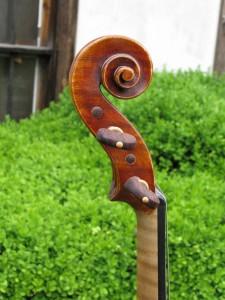 violin-Il-Cannone-2013-3b