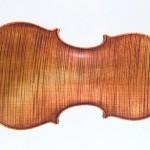 Violin20